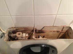 Vlotter toilet vervangen Driebergen